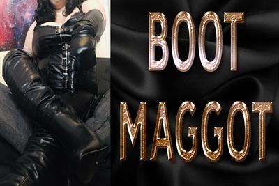 17477 - BOOT MAGGOT