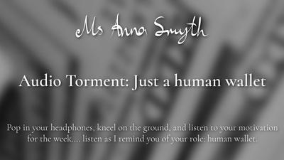 19190 - Audio Torment: Just a human wallet